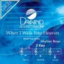 When I Walk Into Heaven image